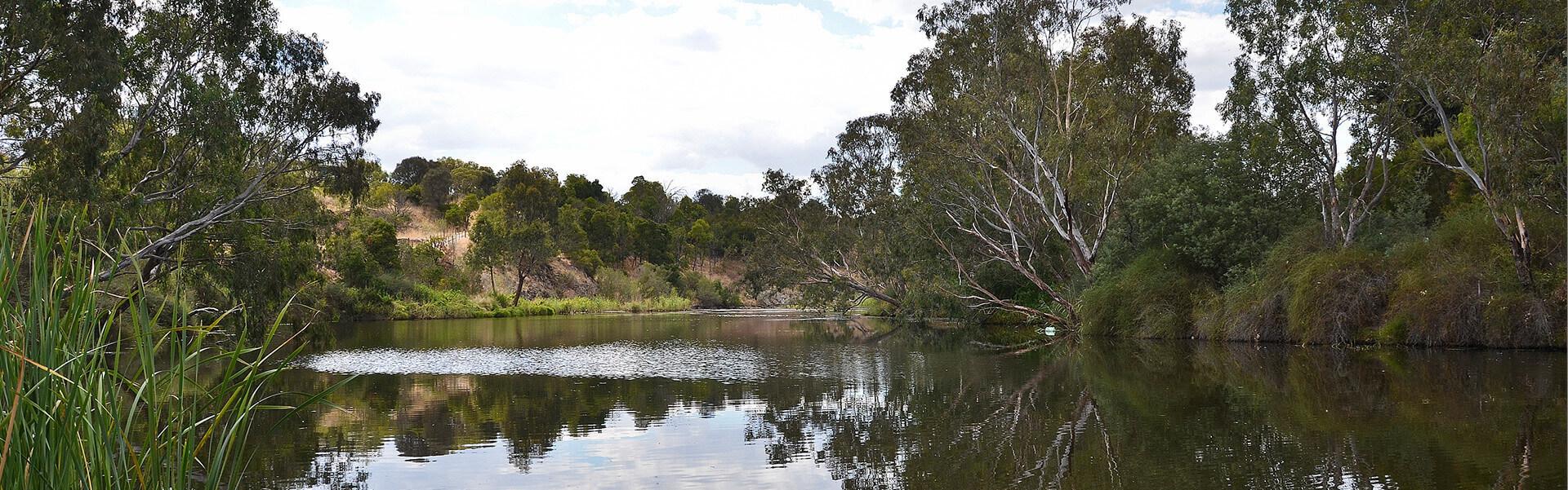 Geelong's only dedicated land website